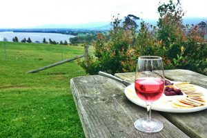 Cheese platter at Two Figs Winery with a glass of wine and the shoalhaven river in the background