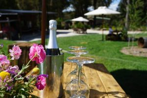 Southern Highlands Wine Tasting Day Tour