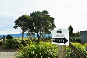 At the entrance to Two Figs Winery