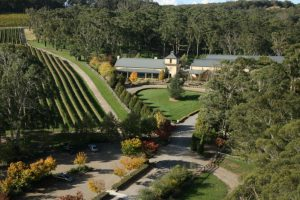 Centennial Vineyards on a Sydney Wine Tour in the Southern Highlands