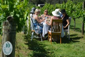 Ladies on a Wollongong Hens Party enjoying High Tea amongst the vines at Cambewarra Estate