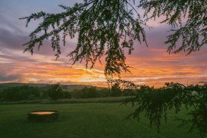 Southern Highlands Restaurant Dinner and Twilight Wine Tasting Tour Sunet at Bendooley Estate