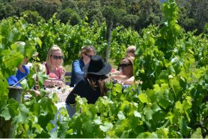 Ladies amongst the vineyard at Cambewarra Estate on a Wollongong Hens Party High Tea in the Vines Tour