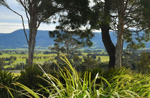 Wollongong Wine Tours - South Coast Day Escape – Wollongong Wine Tour