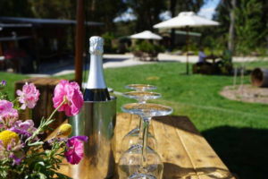 Sparkling Wine at Artemis Wines on a Wine Tour of the Southern Highlands
