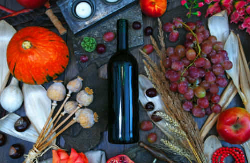 Sydney Wine Tours - JOIN A TOUR from Sydney – Best Sydney Day Trips – Wine Tasting and Lunch Included – Tour from Sydney