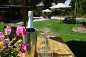 Wine tasting at Artemis Wines on a Sydney Wine Tour