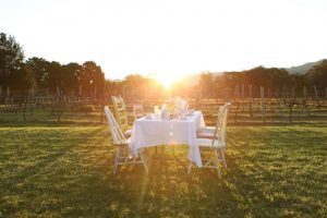 Table setting of a High Tea in the Vines at Cambewarra Estate