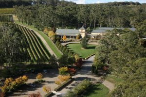Ariel view of Centennial Vineyard on a Southern Highlands Food and Wine Tour